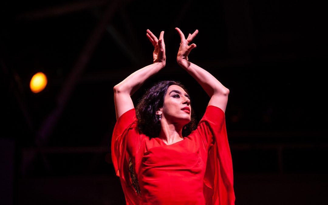 Dance Performances in Tirgan Festivals